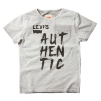 CLEARANCE PRICE Boys Levis T Shirt Grey