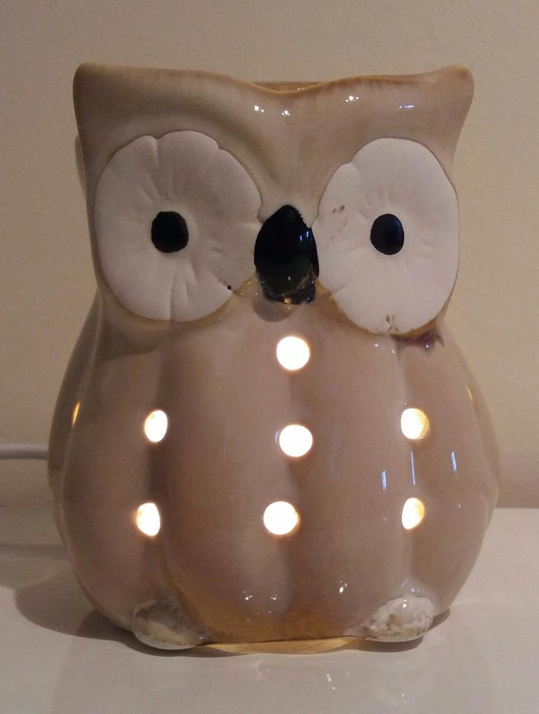 Owl Electric Wax Melter