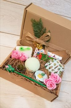 Large cactus gift box