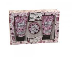 That Girl's Got Attitude Pink Daisy - 3 Piece Gift Set  (2 pack) Bulk Buy