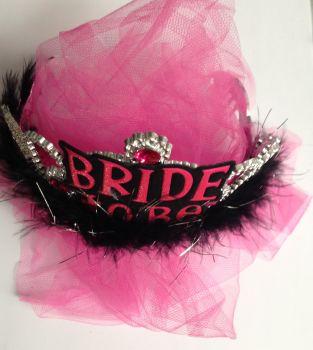 Bride To Be Tiara & Pink Veil