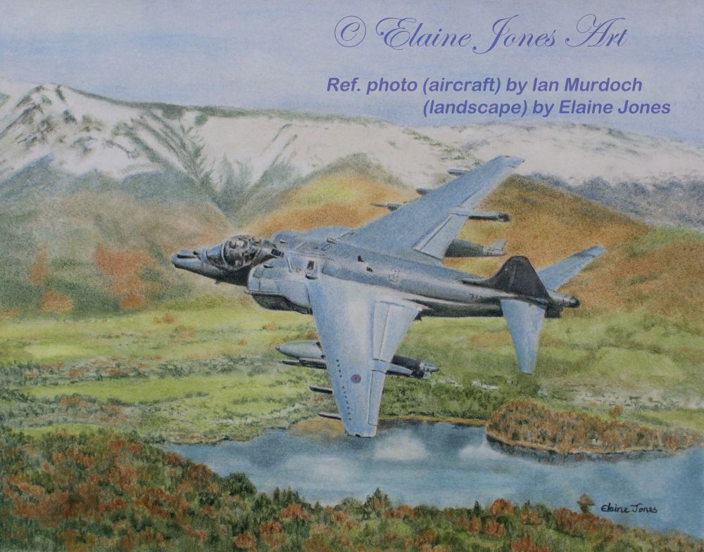 (A117C) Harrier over Derwentwater