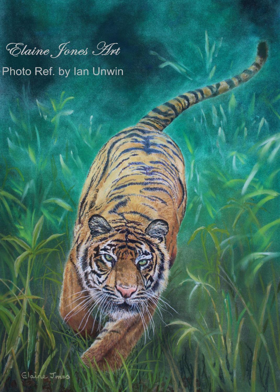 (M105A)  Charging Tiger