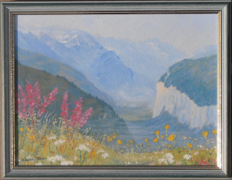 wildflowers above lauterbrunnen framed aba