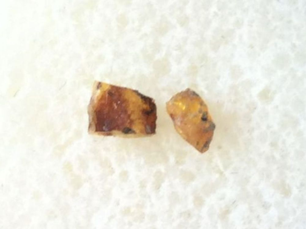 British Amber (Wealden)