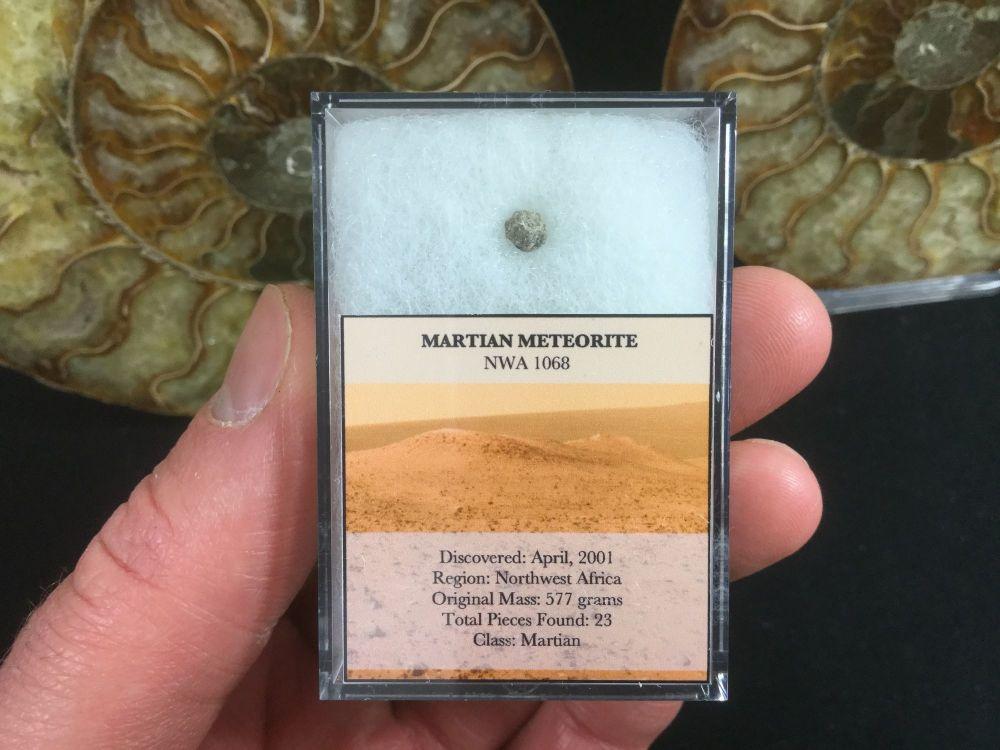 Mars Rock (NWA 1068)