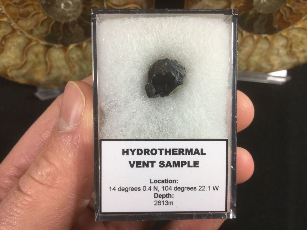 Hydrothermal Vent Sample #03