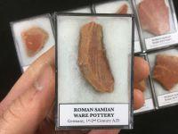 Roman Samian Ware Pottery