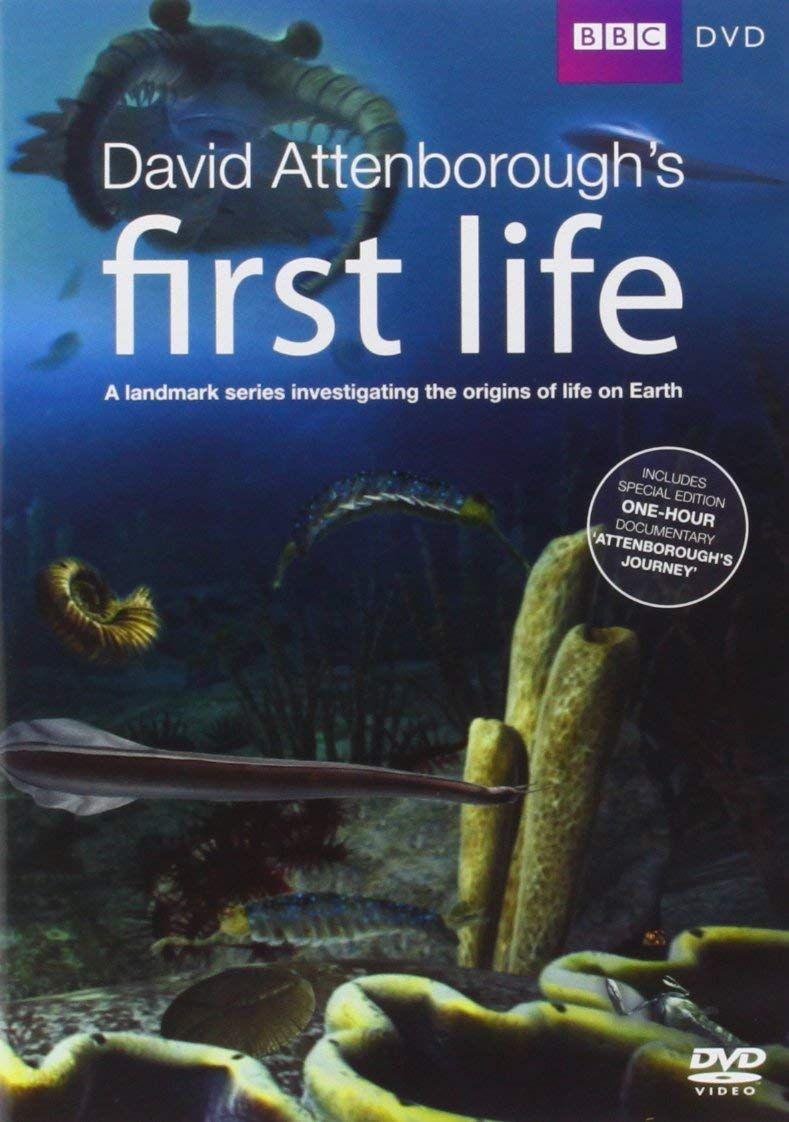 David Attenborough's First Life (DVD)