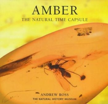 Amber: The Natural Time Capsule (Paperback)