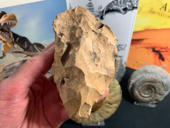 Palaeolithic Hand Axe (Draa Valley, Morocco) #01