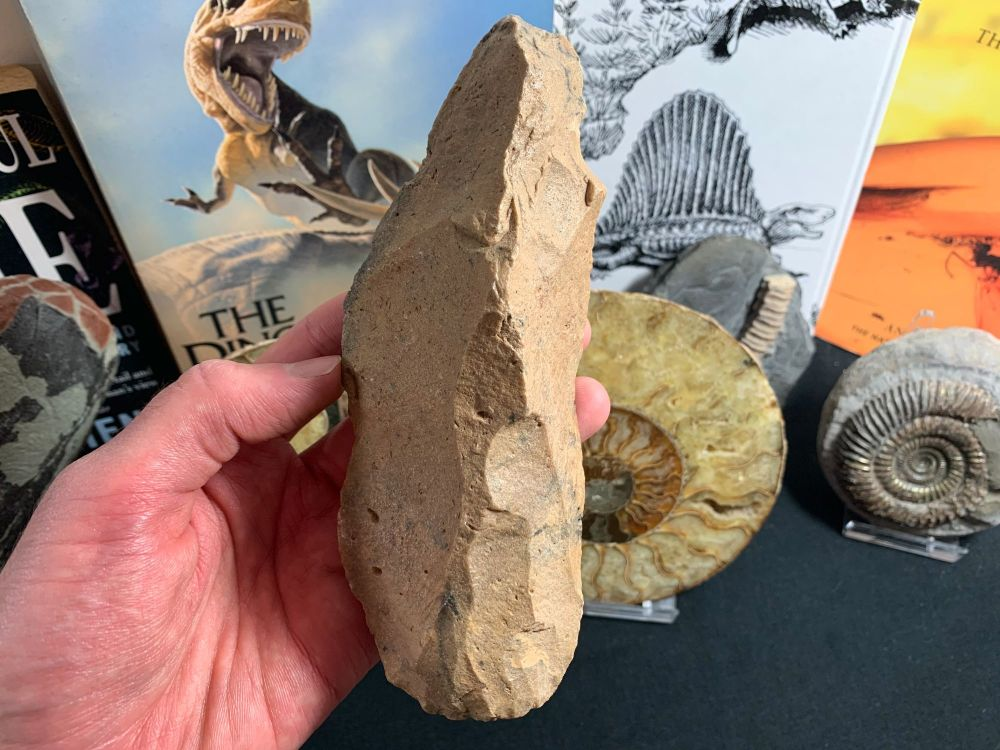 Palaeolithic Hand Axe (Draa Valley, Morocco) #04