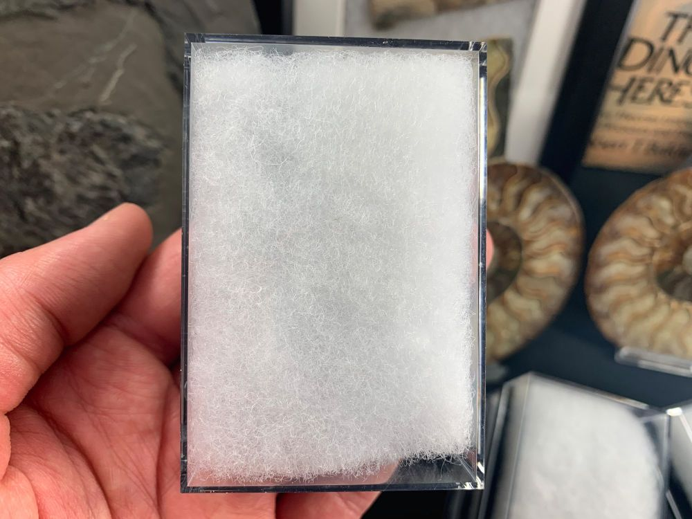 Display Case (Medium) (5 Pieces)