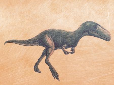 Timurlengia euotica (Tyrannosauroid)