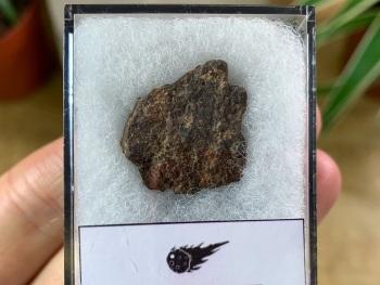 Unclassified NWA Meteorite #01