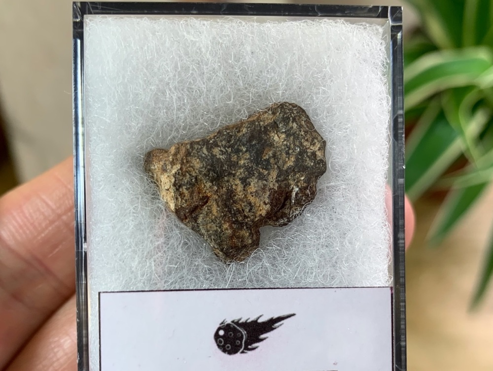 Unclassified NWA Meteorite #02