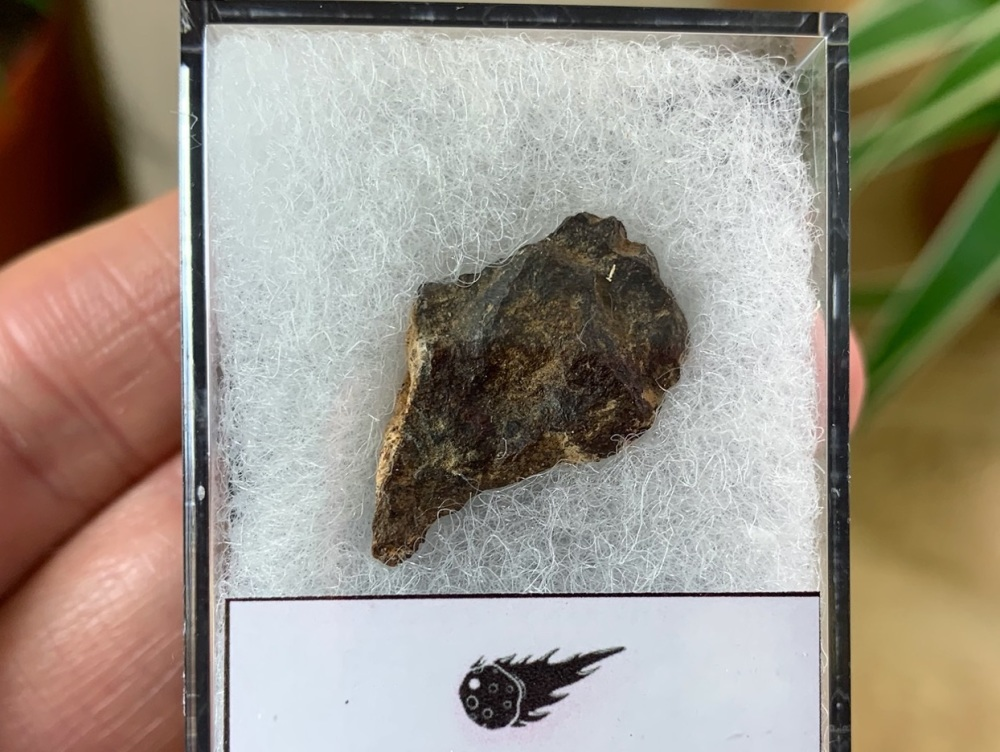 Unclassified NWA Meteorite #05