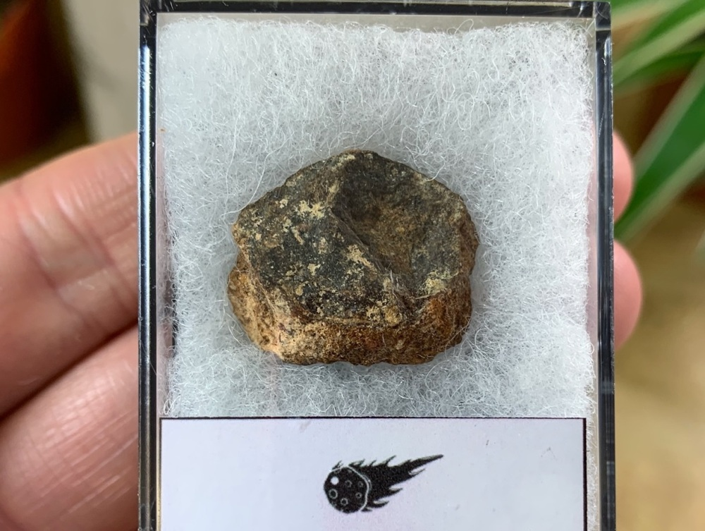 Unclassified NWA Meteorite #06