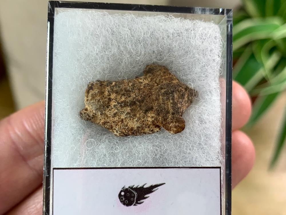 Unclassified NWA Meteorite #08