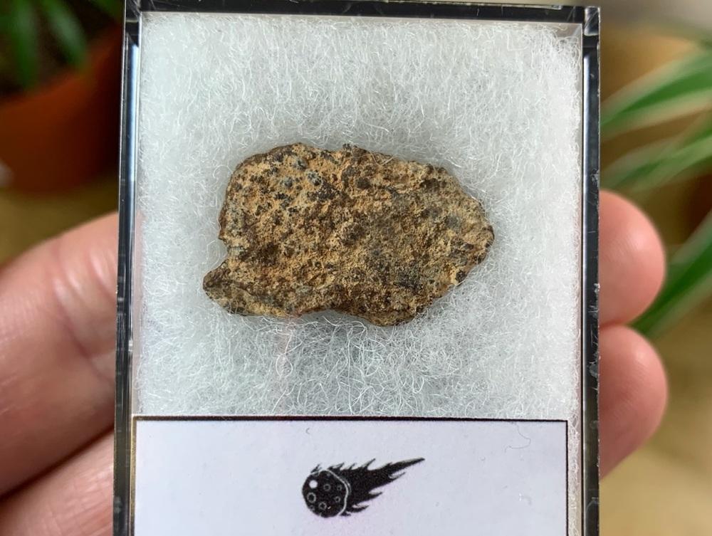 Unclassified NWA Meteorite #11