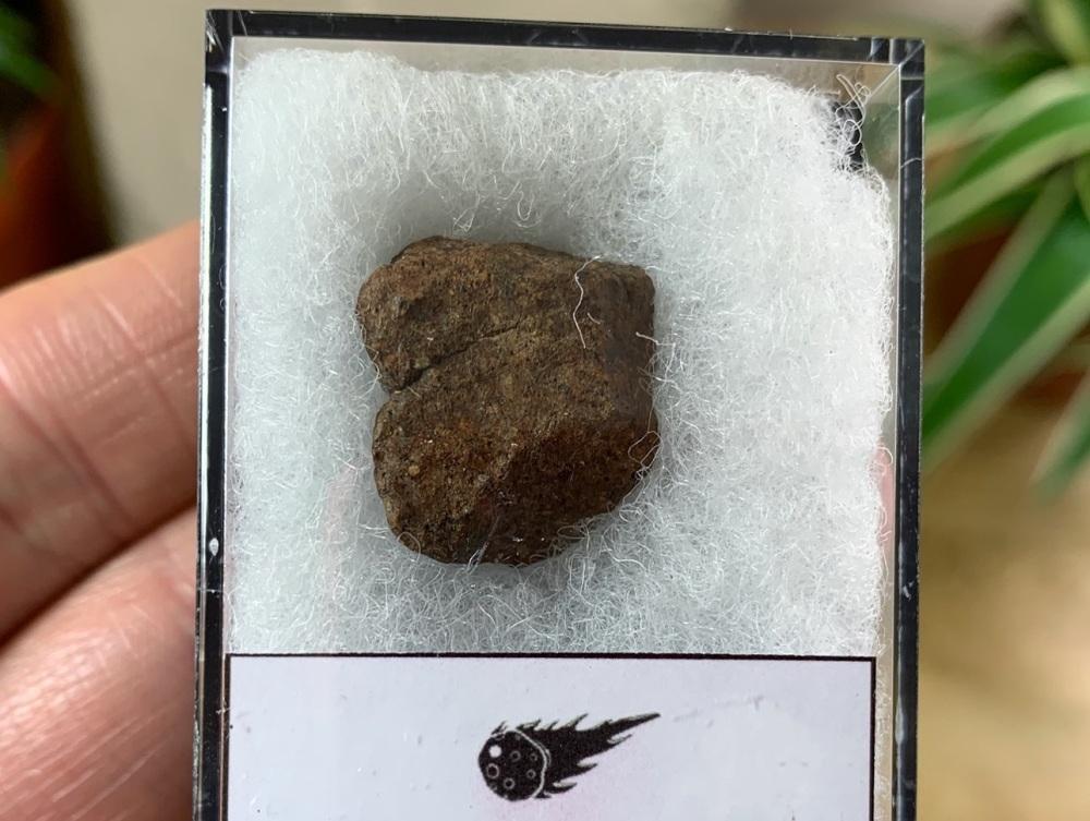 Unclassified NWA Meteorite #13