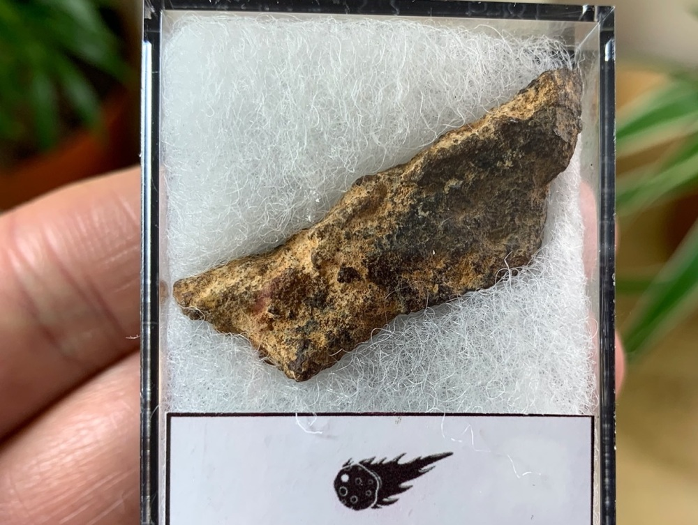 Unclassified NWA Meteorite #16