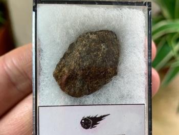 Unclassified NWA Meteorite #18