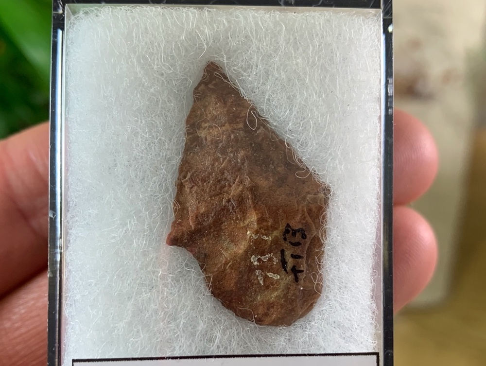 Native American Arrowhead (3,000 - 11,000 BP) #03