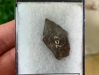 Native American Arrowhead (3,000 - 11,000 BP) #04