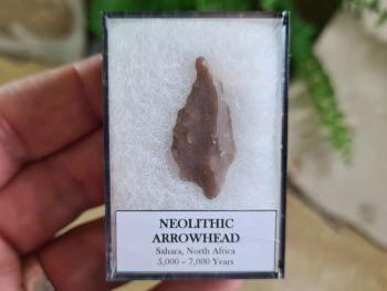 Neolithic Arrowhead, Sahara (7,000 BP) #09