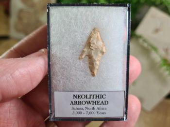Neolithic Arrowhead, Sahara (7,000 BP) #10