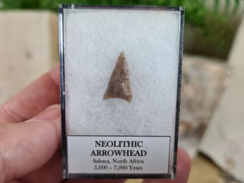 Neolithic Arrowhead, Sahara (7,000 BP) #07