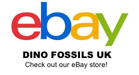 ebay side