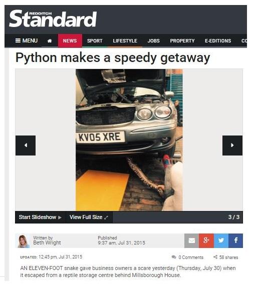 redditch standard snake escapes story