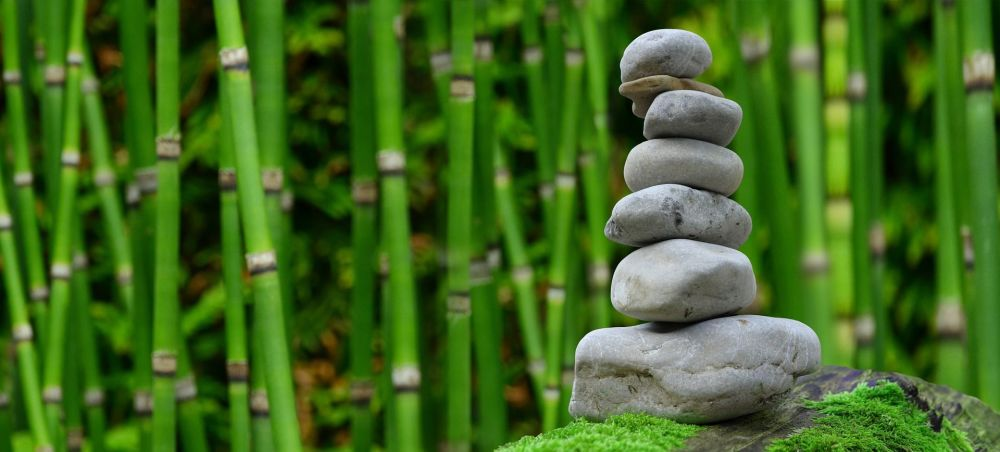 What is the difference between meditation and hypnosis