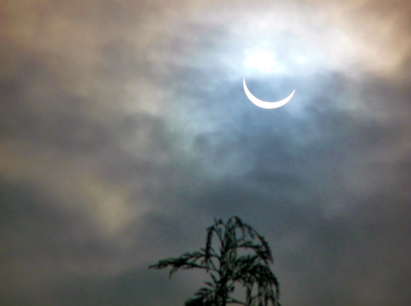 solar eclipse pictures 2015 (3)