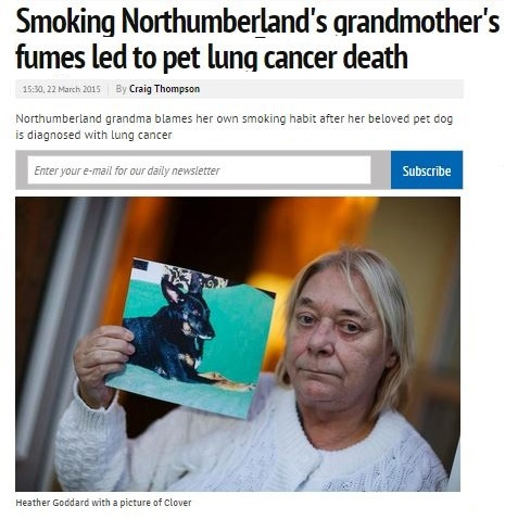 news story about smoking and pets