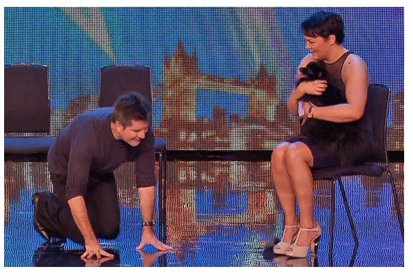 was simon cowell really hypnotised by a dog