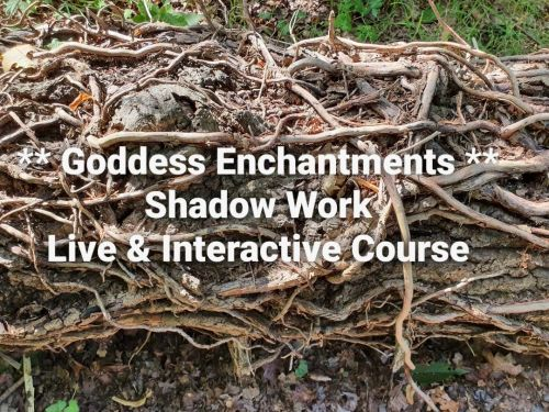 SHADOW WORK COURSE ~ LIVE AND INTERACTIVE