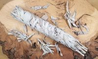 Californian White Sage Smudge Sticks (Ethically Sourced)  - Large