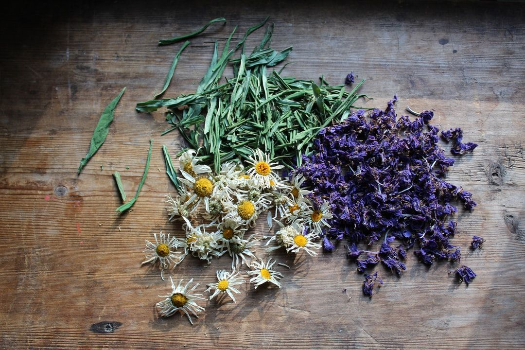 Herbs For Magickal Use