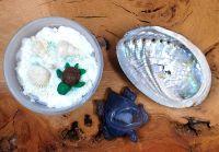 January Enchantments Box ~ Turtle Source and Serenity Box