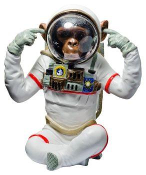Monkey Astronaut 2