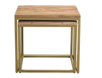 Enfield Nest of 2  Tables Gold Frame