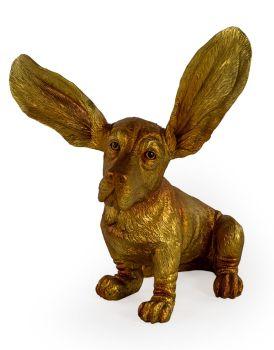 Gold Surprised Basset Hound
