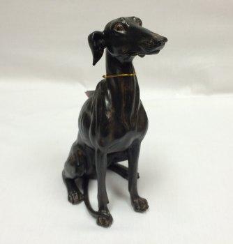 Lurcher Sitting Dog