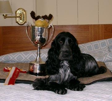 Doug_-_Trophy_-_Jsy