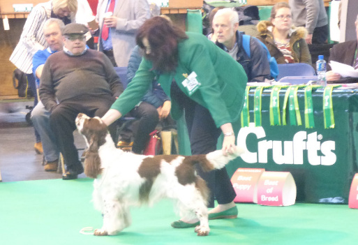 oliver and i - crufts 2015
