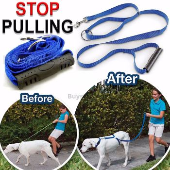 Anti Pull Dog Train Harness Walking Leash