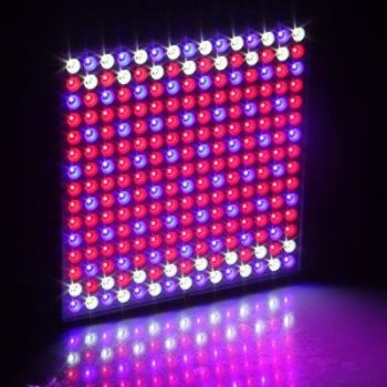 45W 225 LEDS Hydroponic Plant Grow Light Panel